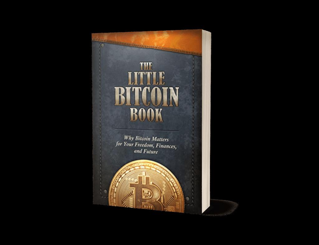Bitcoin boeken - The Little Bitcoin Book