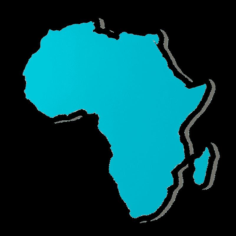 In welke landen is Bitcoin onwettig in Afrika?
