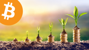 Bouw een crypto portfolio met Dollar Cost Average (DCA)